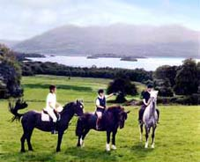 Daily guided trail rides - horse riding during the holidays